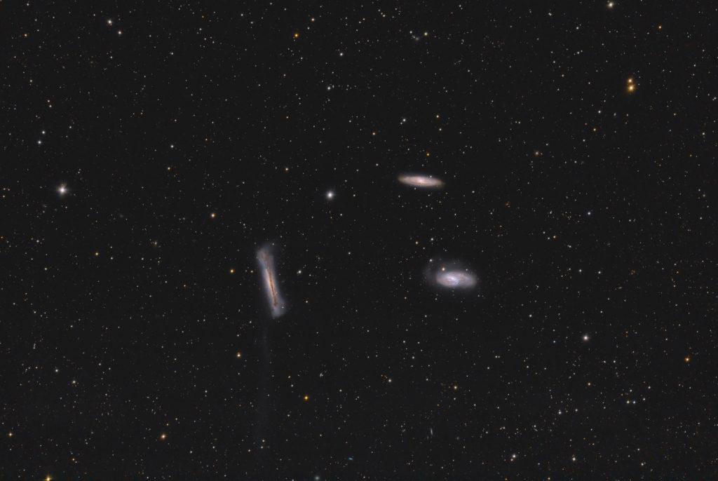 M65, M66, NGC3628 aufgenommen mit RASA 36 f2.2 - Christoph Kaltseis