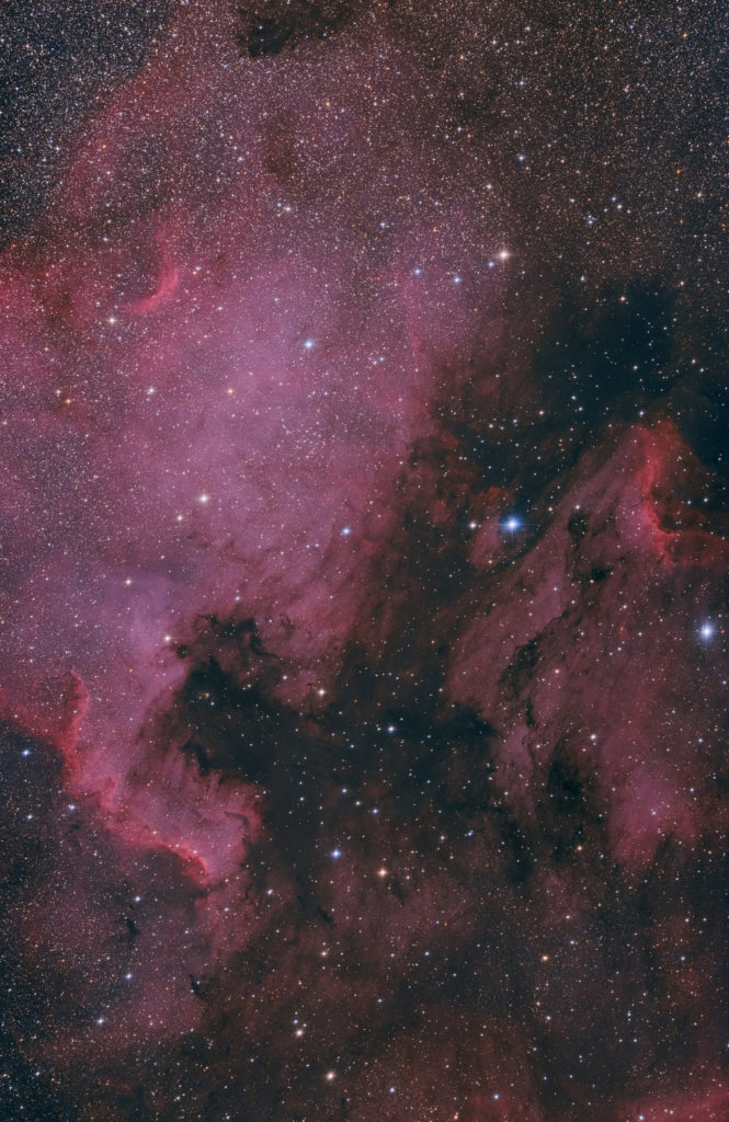 NGC7000 aufgenommen mit RASA 11 - Christoph Kaltseis