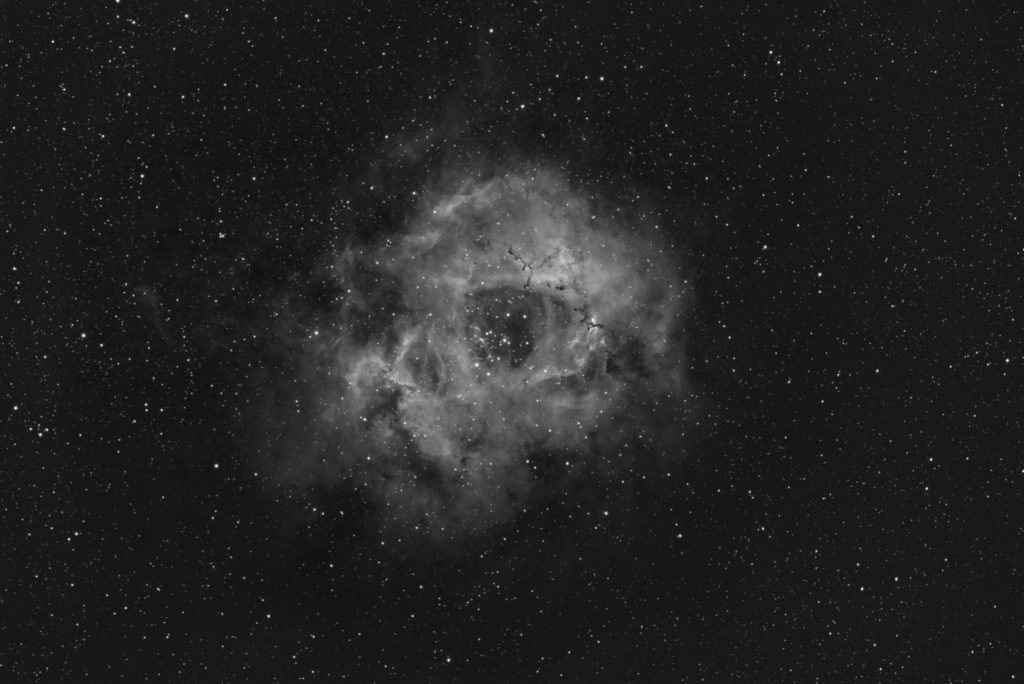 NGC 2244 Rosette Nebula aufgenommen mit Celestron Edge HD 1100 + Hyperstar - Andreas Bringmann