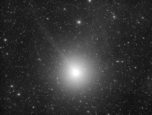 """monchromes kontrastgesteigertes Foto von Komet 46P/Wirtanen aufgenommen mit RASA 8"""" , Michael Jäger"""
