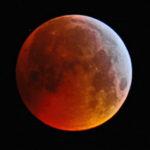 Mondfinsternis Januar 2019 aufgenommen mit Celstron C8 - Livio De Toffol