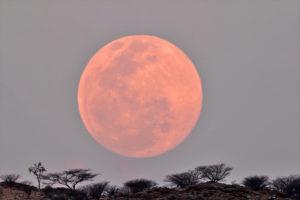 Mondaufgang: Vollmondaufgang, Canon 60D mit 1200mm Brennweite, ASA 400, 1/10 Sekunden belichtet.