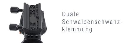 765_cgxlschwalbenschwanz
